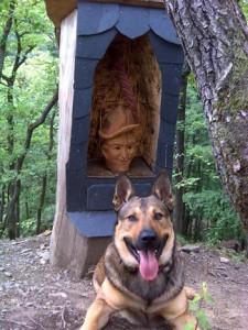 A geo-dog with Schinderhannes. Photo by geocacher Glaubensbruder