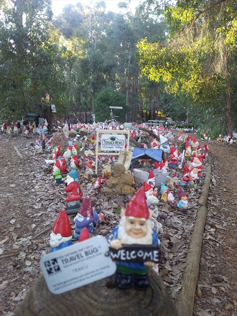 Just hangin' with my gnomeys — Gnomesville (GCHTN7) — Geocache of the Week