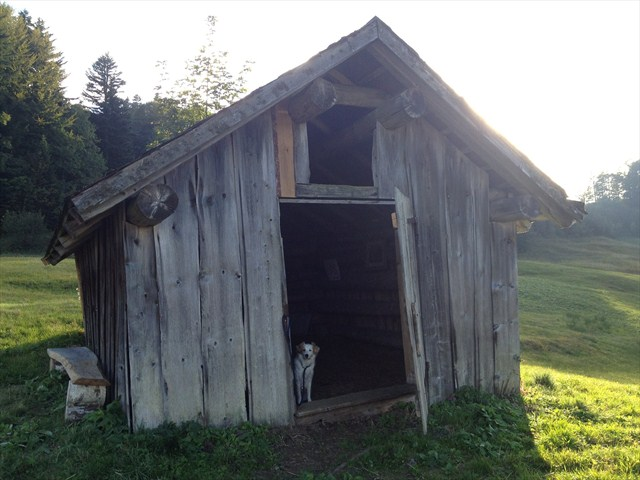 The geocache. No not behind the house, it IS the house. Photo by geocacher MCDenifl