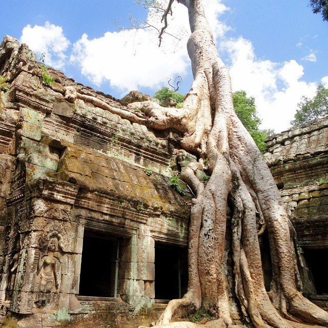 GC3Q9VP: Tomb Raider! Snag this geocache at sunrise to avoid muggles at the world famous Angkor Wat in Cambodia. #geocaching #adventure #travel