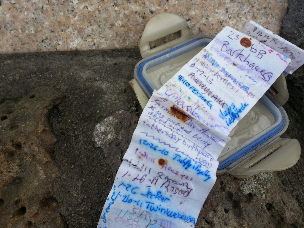 A full log sheet at the geocache site