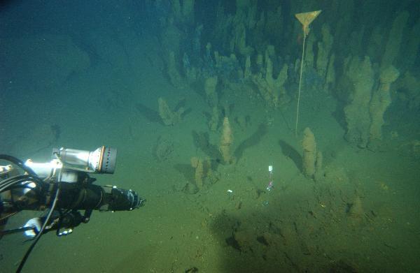 GCG822 Rainbow Hydrothermal Vents