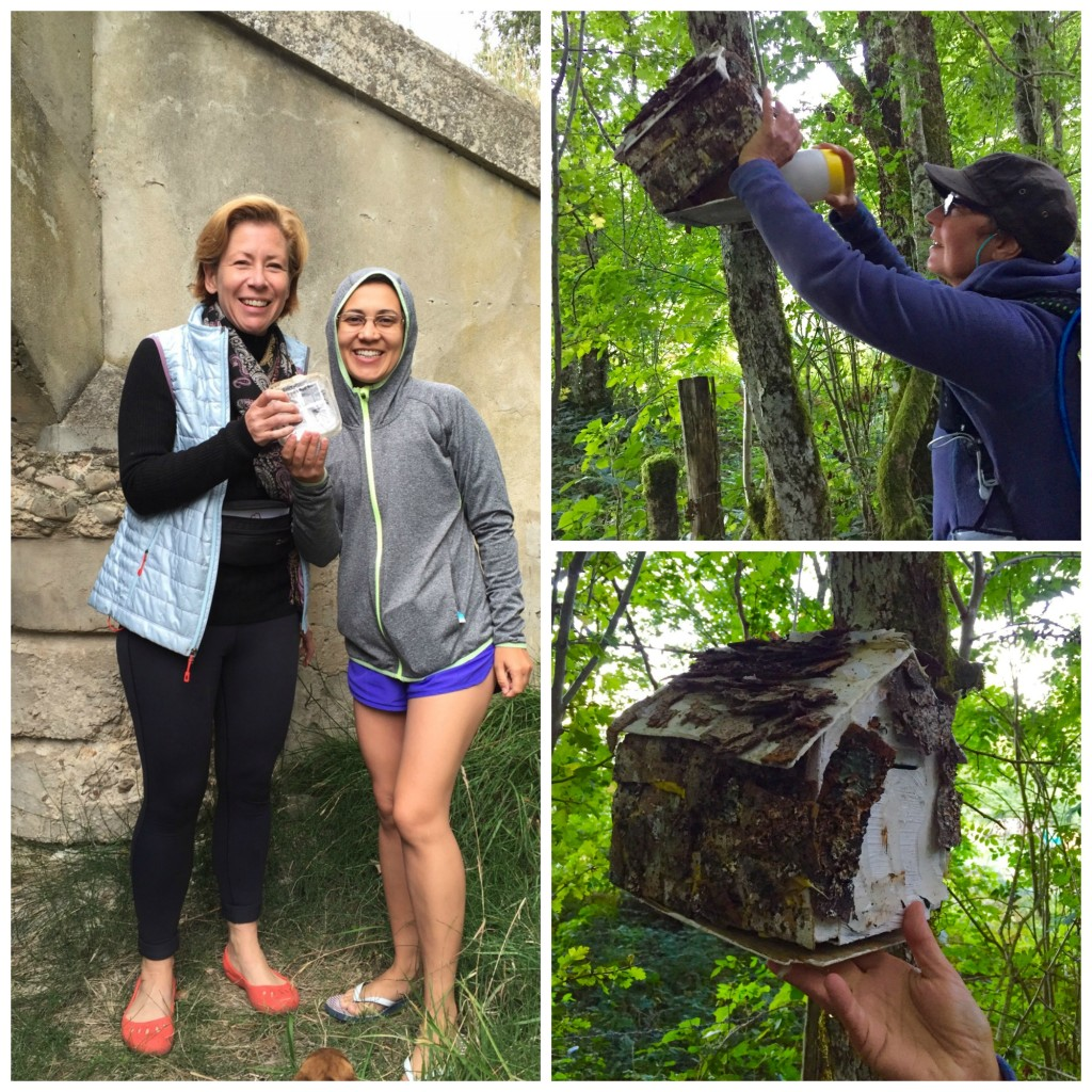 Clockwise from left: Karin and Milene find a cache together, Amber finds her 1st geocache.