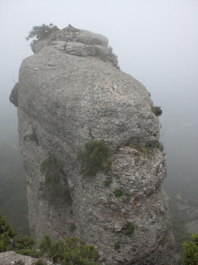 Miranda of Horses tower.