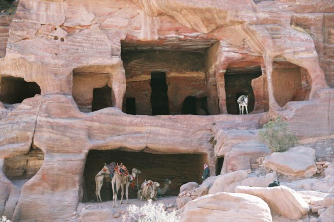 Caves with camels and a donkey on the way to Petra