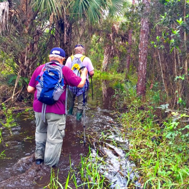 This is how wet and muddy the path was in February 2016 for Mary & crew
