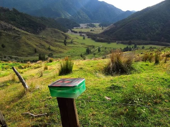 Geocaching in New Zealand