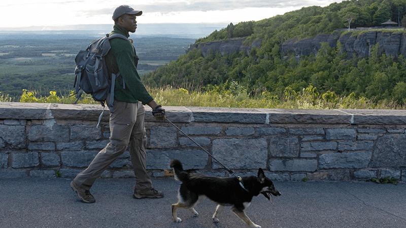 A geocacher walks their dog on a hiking trail.