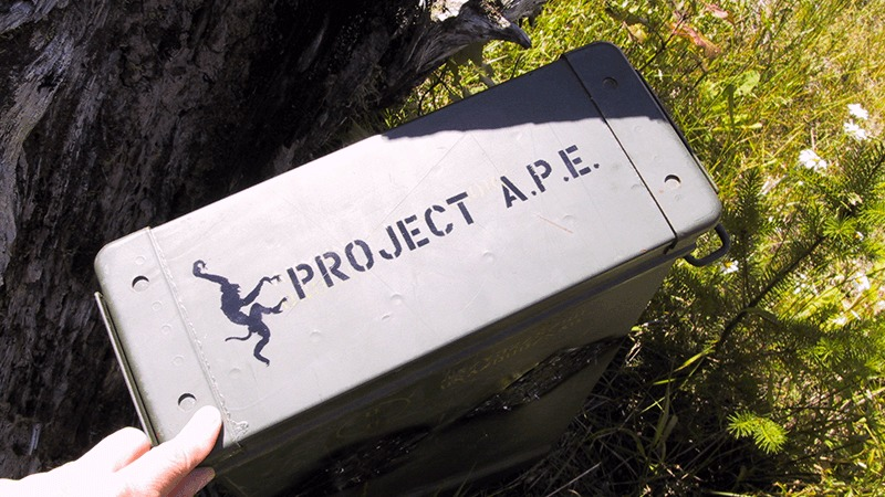 APE Cache container